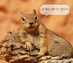 oshirase_039.jpg