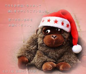 oshirase_046.jpg