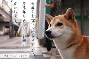 oshirase_052.jpg
